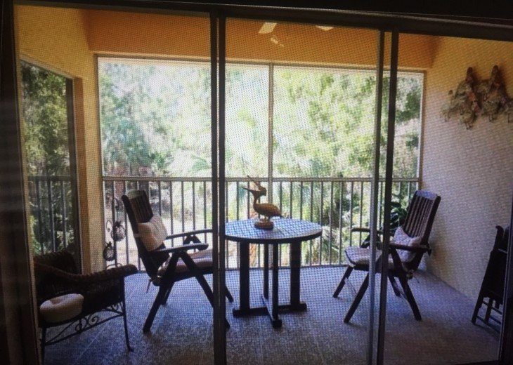 Pet Friendly Condo in Lely Resort #16