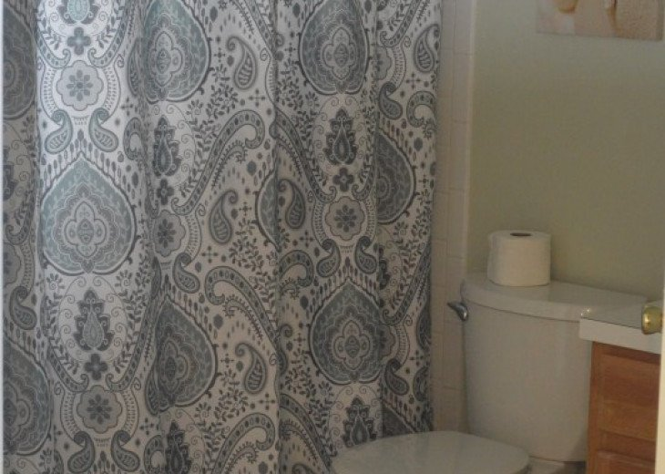 Vacation Rental Home Close to Disney, 4 Bdrm Private Pool, Free Internet #16