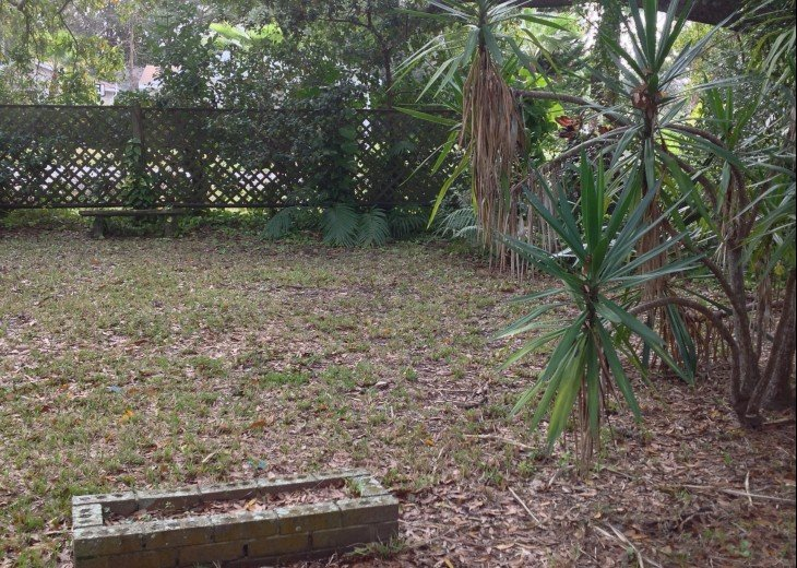 Peaceful Pinebrook Manor for 2 to 14 guests 1 block from Clearwater Country Club #41
