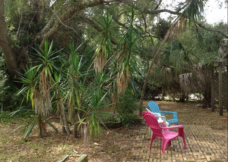 Peaceful Pinebrook Manor for 2 to 14 guests 1 block from Clearwater Country Club #40