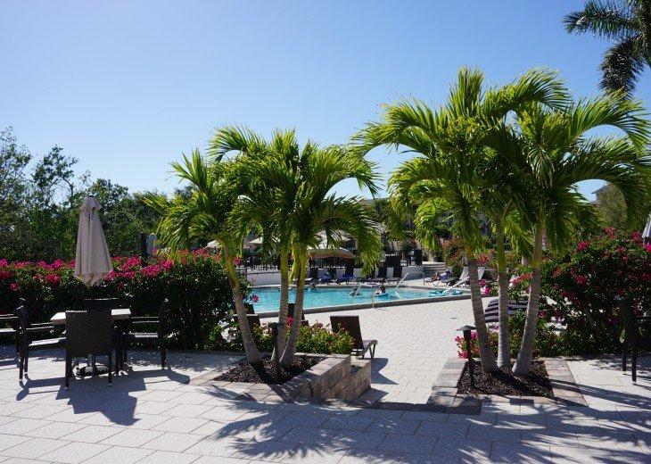 Tarpon Cove Club pool and Tiki Bar