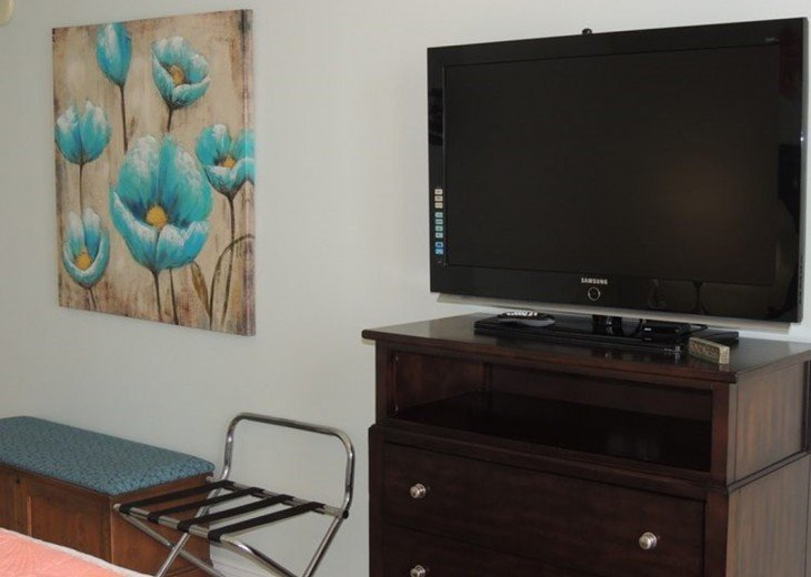 Master has a large flat screen TV for private viewing