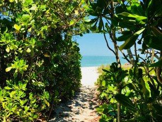 NEW LISTING - LIFE AT VANDERBILT BAY & BEACH IS LIKE A NEVER ENDING WEEKEND! #1