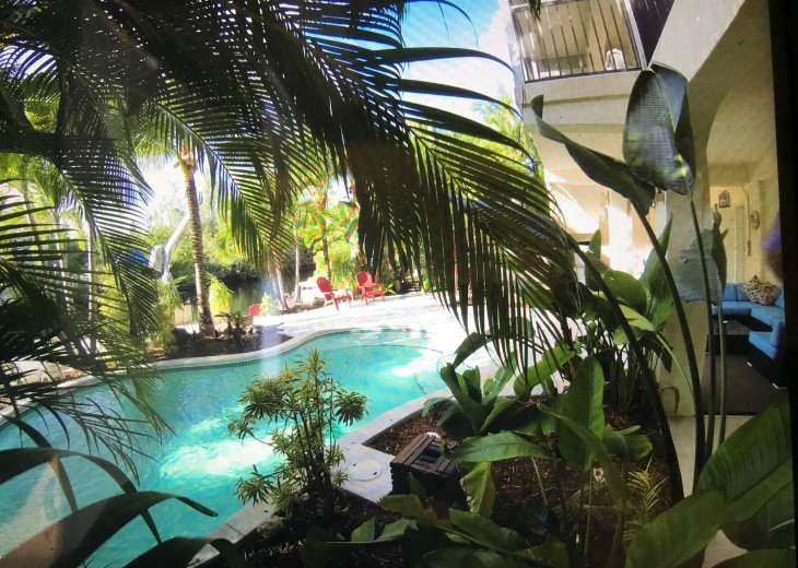 Paradise Palms #9