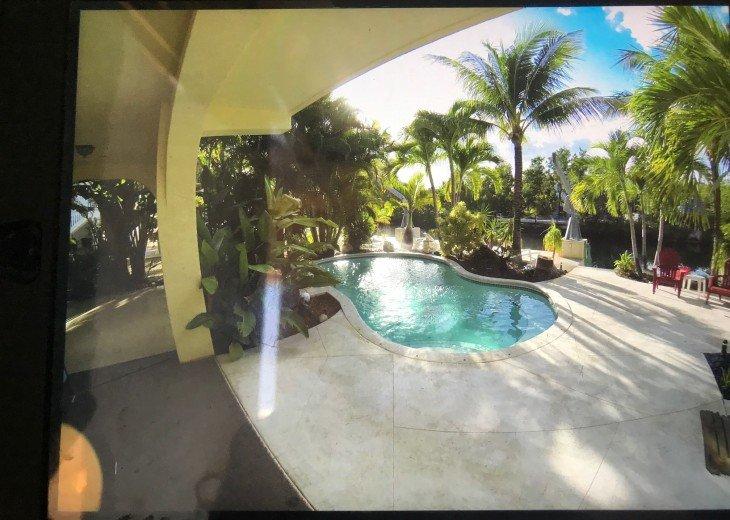 Paradise Palms #10