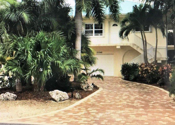 Paradise Palms!