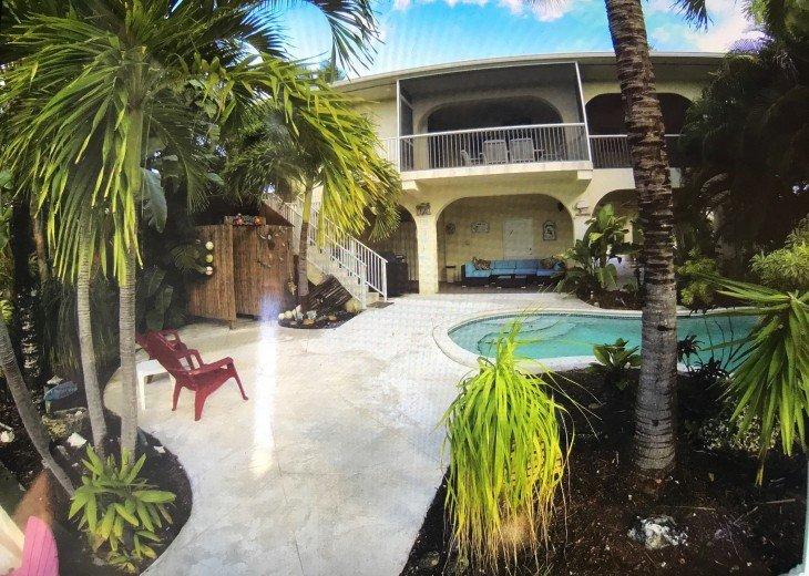 Paradise Palms #6