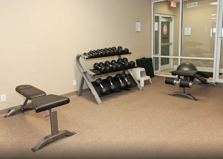 Free Weights up to 50lbs