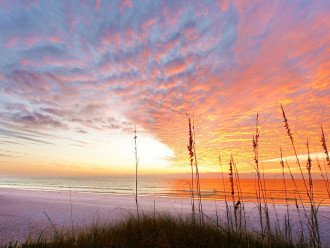 Beautiful Skies of Florida.....Come Visit Us....Book Now, Weeks Are Booking Fast
