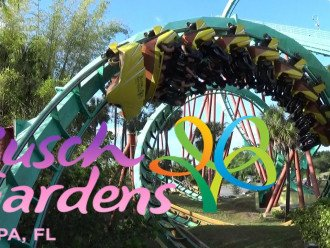 Busch Gardens, Spend the day having Fun......about 25 minutes away from us