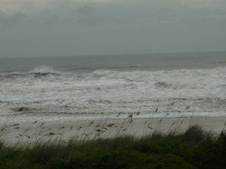 surf_229