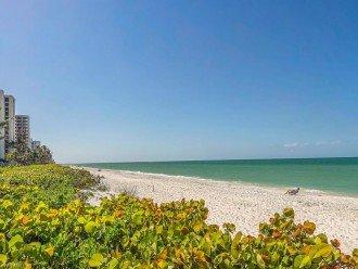 NAPLES BEACH FRONT CONDO - SAVOY #1