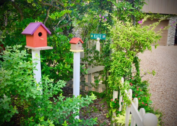 Bird house in garden, surrounded by native plants