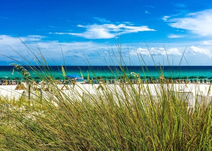 PANORAMIC OCEAN VIEWS PLUS SERENITY AT THE BEACH FROM YOUR 6TH FLOOR CONDO #16