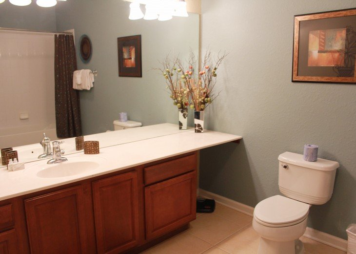 Large second bathroom includes a shower/garden tub combo.