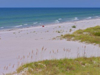 Look No Further--Hurry Before This Gulf Front Property w/Balcony is Booked #1