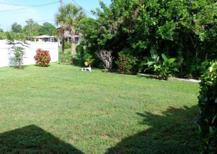 Yard area.