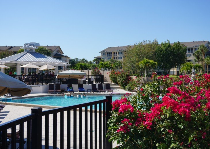 Amazing Unit. Annual or seasonal rental. Stunning view of Wiggins Bay. #20