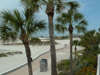 Beach Path looking north