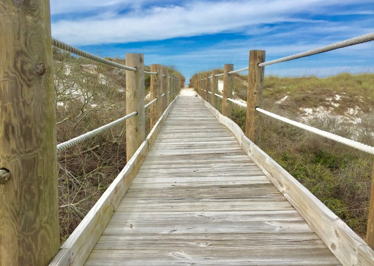 Boardwalk to the Beach 2019
