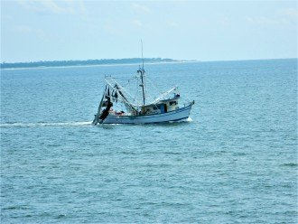 Shrimp boat sailing by