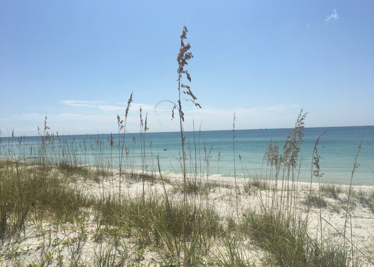 Views at Cape San Blas
