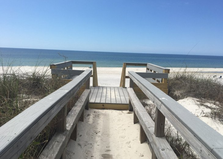 Sandy Footprints- Lg private pool, outdoor kitchen, pets, popular home #3
