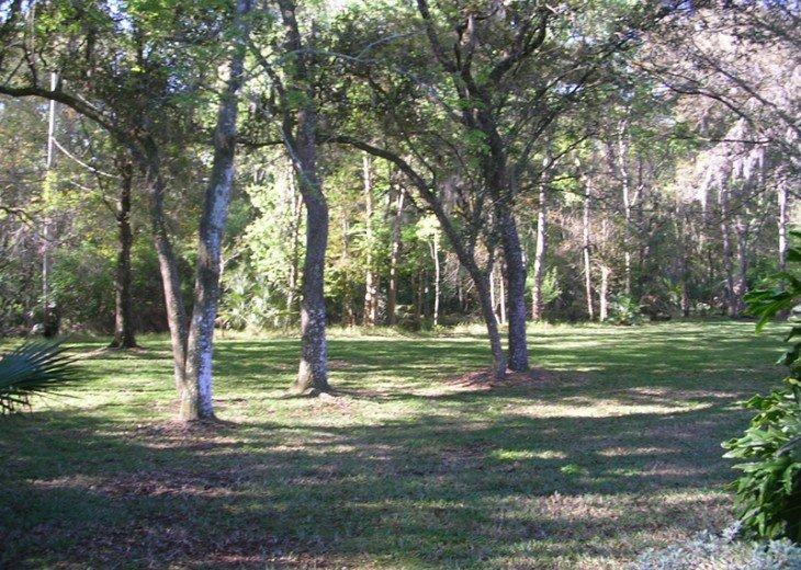 Gulf Coast Woodland Retreat by Golf & Country Club #12