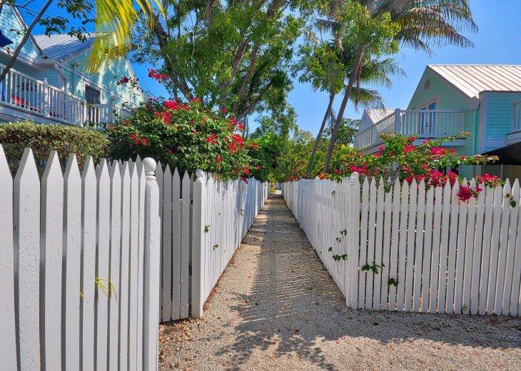 Shipyard Palms #9