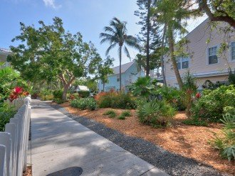 Shipyard Palms #1