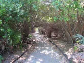Shaded Walking Trail to Private Beach Area