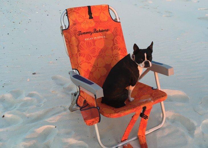 DIRECT BEACH FRONT - 3 Beach Front Decks - Lot's of Extra's - Pet Friendly #37