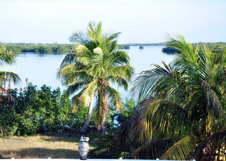 Villa Secret Garden on Pine Island - Boat available #8