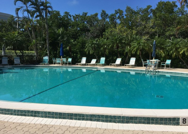 December special at off season monthly rate! Comfortable Condo Naples #15