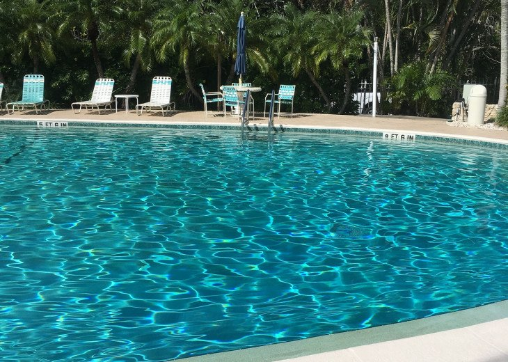 December special at off season monthly rate! Comfortable Condo Naples #16