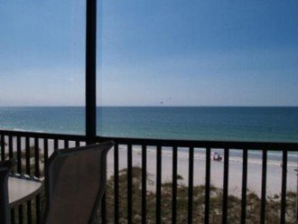 Watch Dolphins and Manatees from Your Fifth Floor Balcony! #1