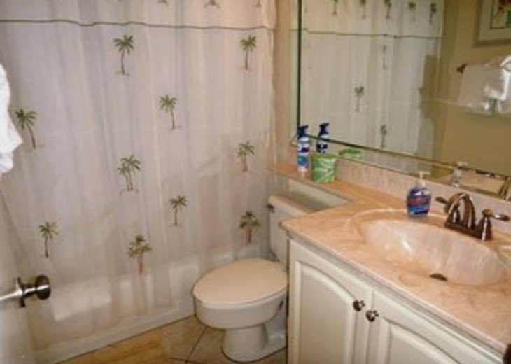 Private Guest Bathroom shower/tub combo. All Lines are supplied.
