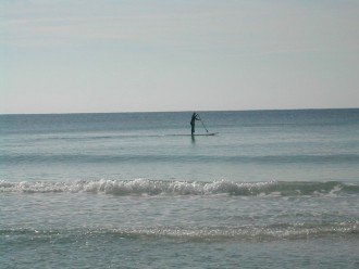 Rent a Paddle Board from the Beach Attendant and have fun on the water.