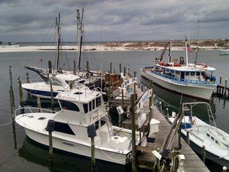 View over Destin harbor w/boats for hire for diving, fishing, snorkeling
