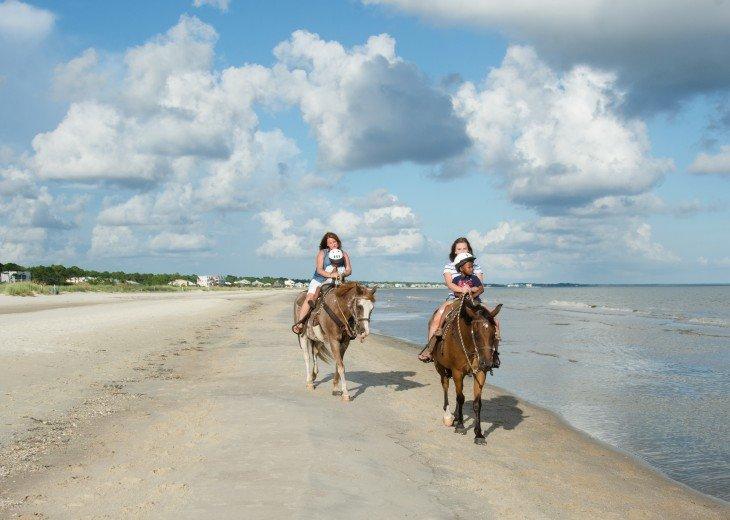 Horseback Riding Right on the Beach