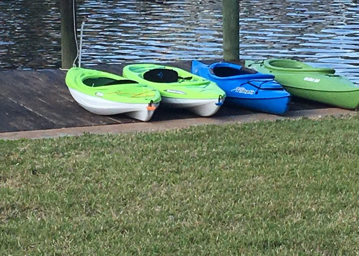 Kayaks for your use