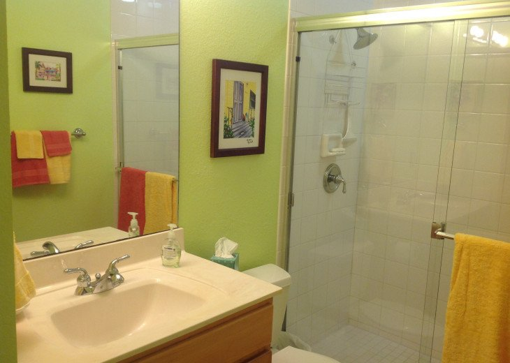 Guest Bathroom and Shower