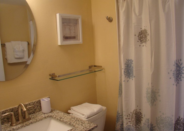 Renovated full master bathroom with new fixtures.