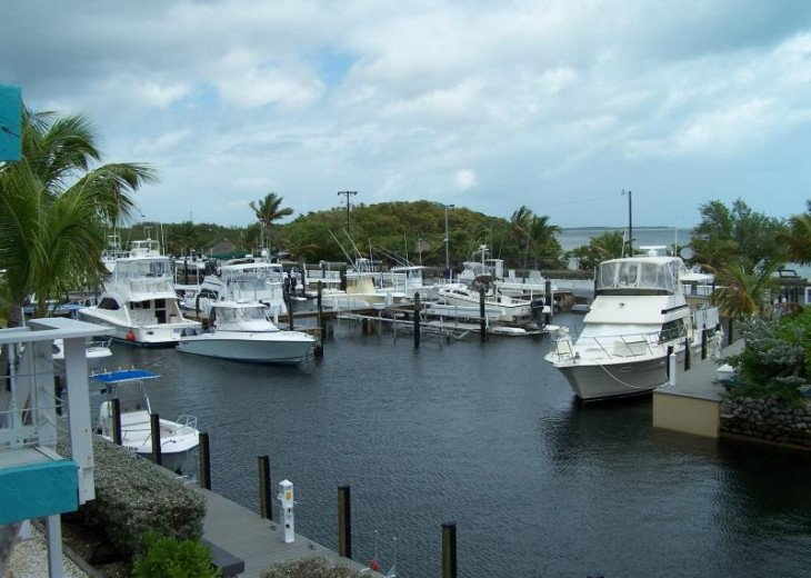 Key Largo Ocean Front Villa with Dock and Incredible views #3