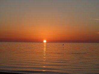 Islamorada Beachfront Apartment - Great Sunsets! Private Beach! #1