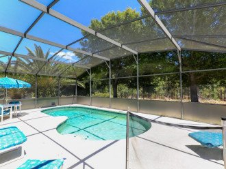 Very Large 4 bed 3.5 bath private pool home close to Disney #1
