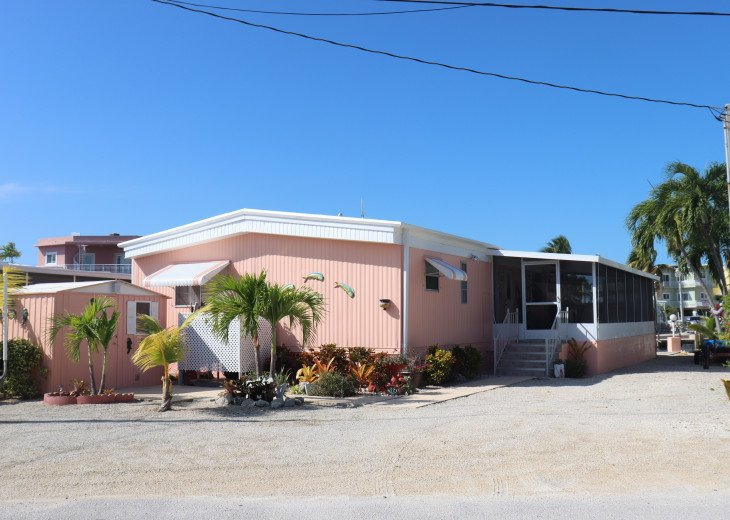 Newly painted house with ample parking space in front and side of property