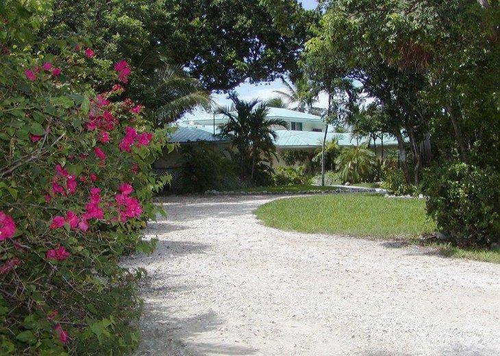 3 Acre Estate In Florida Keys #4