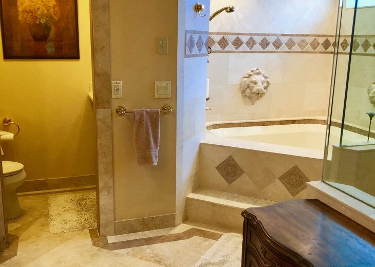 Master bathroom jetted tub and separate shower