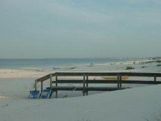 Sea Oats on the Beach #1